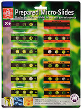 Elenco EDU-36729 12 Prepared Microscope Slides With 36 Assorted Specimens