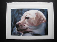 I SPY Signed LIMITED EDITION LITHOGRAPH 3/950 By LINDA DANIELS