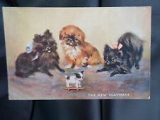 "Vintage Raphael Tuck+Sons Oilette Postcard No 3597 ""The New Playmate"" Cute Dogs"