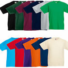Fruit of The Loom Kids Boys Girls Childrens School Plain T Tee Shirt SS031