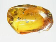 Schöner großer Honig Amber Bernstein aus Bernsteinsammlung  15,8 Gramm
