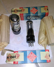 pair 2x RGN1064 RGN 1064 AZ1 WE51 1805 Telefunken Tube rectifier not mesh
