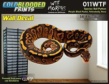 Removeable Wall Decal Snake Ball Python Cold Blooded Prints Sticker 011WTF