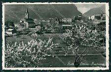 Torino Settimo Vittone Foto cartolina QK5025