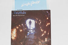 "THE TRIFFIDS -Bury Me Deep In Love- 7"" 45 mit Product Facts Promo-Flyer"