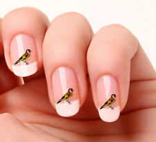 20 NAIL Art Decalcomanie Trasferimenti Adesivi # 263-BIRD ORO Finch