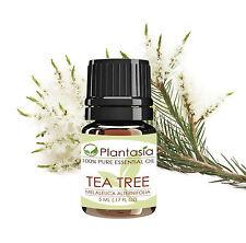 Tea Tree Essential Oil 5 ML (0.17 FL OZ) 100% Pure Therapeutic Grade Australia