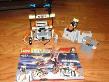 "LEGO ""HARRY POTTER & THE HUNGARIAN HORNTAIL "" #4767 MANUAL NO DRAGON"