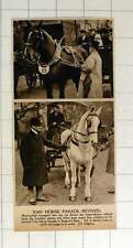 1920 Van Horse Parade In Regent's Park Fine Exhibits