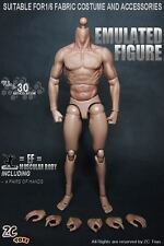 "ZC Toys 1/6 Scale Muscular Body Fit for 12"" Hot Toys Male Head Sculpt"