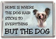 "Chinese Crested Dog Fridge Magnet ""Home is Where"" Design by Starprint"