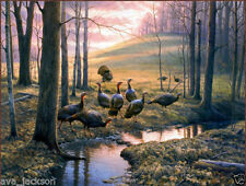 Home Decor Wall art,picture HD printed on canvas Wild turkeys Forest Callin24x32