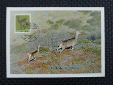 SCHWEIZ MK 1967 866 TIERE REH DEER MAXIMUMKARTE CARTE MAXIMUM CARD MC CM a5304