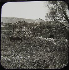 Glass Magic Lantern Slide VILLAGE OF NAIN C1890 PHOTO ISRAEL NEIN