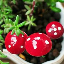20PCS Mini Red Mushroom DIY Dollhouse Decor Miniature Plant Pots Garden Ornament