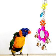 Colorful Parrot Hanging Chew Bell Mirror Toys Swing Cockatiel Parakeet Birds Toy