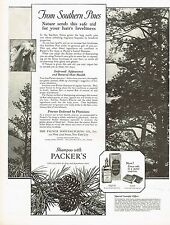 1920's BIG Vintage Packer's Pine Tar Shampoo Tree Photo Print Ad
