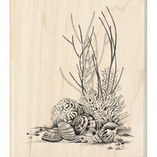 CORAL Rubber Stamp 60-00546 Inkadinkado Brand NEW! beach shells ocean pebbles