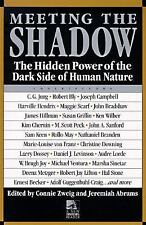 New Consciousness Reader: Meeting the Shadow : The Hidden Power of the Dark...