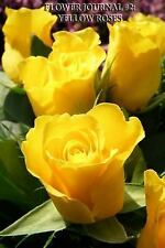 Flower Journal #2: Yellow Roses (blank Pages) : 200 Page Journal by Flower...