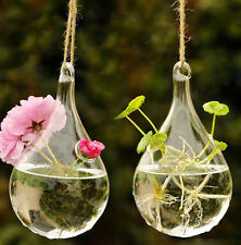 Planter Container Pot Terrarium Flower Hanging Home Decor Wedding Glass Vase