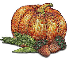 PUMPKIN & ACORN w/LEAVES/Iron On Embroidered Applique Patch/Food, Autumn