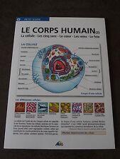 Guide AEDIS scolaire éducatif N°55 LE CORPS HUMAIN (2) - COM 9