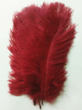 Wholesale /10-100pcs/ beautiful natural ostrich feathers 6-8 inches /15-20cm