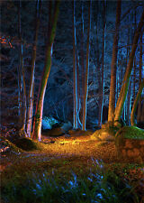 Night Scenic Photo Background Forest Studio Canvas Photography Backdrops 5x7ft