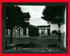FOTOGRAFIA PHOTO VINTAGE B/N BLACK AND WHITE 1978 PAESTUM TEMPIO - SALERNO X