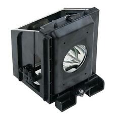 Samsung HLR4264WX/XAC (Type1) HLR4664WX/XAC (Type1) SP50L3HR TV Lamp w/Housing