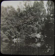 Glass Magic Lantern Slide WILDERNESS POND IPSWICH C1910 PHOTO SUFFOLK ENGLAND