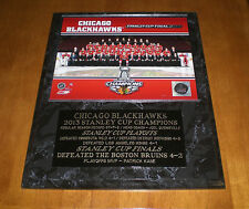 2013 CHICAGO BLACKHAWKS STANLEY CUP CHAMPIONS TEAM PHOTO PLAQUE