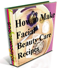 How to Make Your Own Facials Natural Healthy Pure Beauty Care at Home 99 Recipes