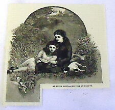 1882 magazine engraving ~ MY SISTER ELLEN, two young women in field w/ dog