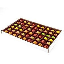 Bergen Marzipan 54 Piece Assorted Fruit Box Tray Net Weight 25 oz  NEW