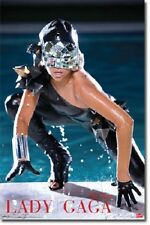 LADY GAGA THE FAME BY THE POOL NEW FUNKY POSTER 22x34 FAST FREE SHIPPING