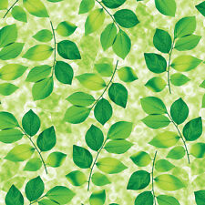 Green Wallpaper Designs Ideas Home Interior Wall Covering Self Adhesive Decor