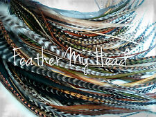16 Pc Whiting Super Euro Grizzly Hair Feather Extension Wild Thing