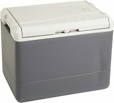 Thermoelectric Chill Cooler 40Quart Volt Electric Iceless Fridge Refrigerator
