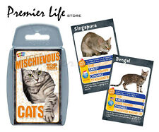Cats Top Trumps - Who's the Most Mischievous Cats