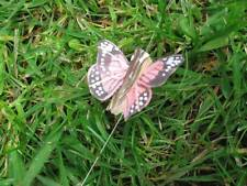 Tiny Feather Butterflies Salmon Pink  - Speckled Wings - 3.0cm - Set of 2