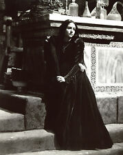 Romeo and Juliet Olivia Hussey 8x10 photo T3497