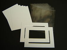 """10 x 8"""" Picture & Photo Mount & back & clear bag kit - Nice white quality bevels"""