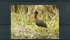 Guyana 2012 MNH Birds of South America 1v S/S II Glossy Ibis
