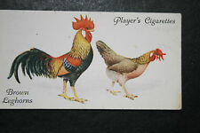 Brown Leghorn   Chickens  Original 1930's Vintage Colour Card # VGC
