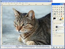 Editor de imagen fotográfica 2016 para Windows 10, 7, 8.1 y Adobe Photoshop compatible