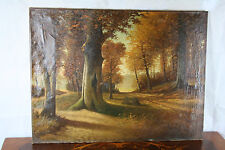 Oil on Canvas Flemish Dutch AUTUMN forest woods   1960's   31.5x23.6""