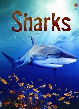 Sharks: Information for Young Readers - Level 1 (Usborne Beginners) by Clarke, C