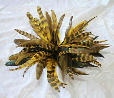 "50+ Gold Yellow 6-8"" CHINCHILLA COQUE rooster Feathers,  Cynthia's Feathers"